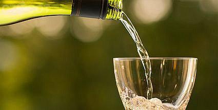 Ochutnávka růžových vín a klaretů s country kapelou Medvědi