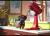 Letní kino - Tajný život mazlíčků 2 (2019)