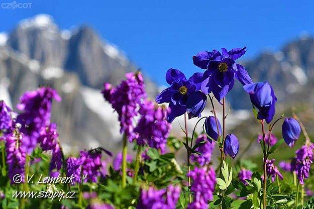 Vladimír Lemberk: Altaj – nejkrásnější hory Sibiře
