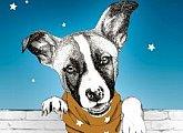 Projekce pro seniory - Gump - pes, který naučil lidi žít