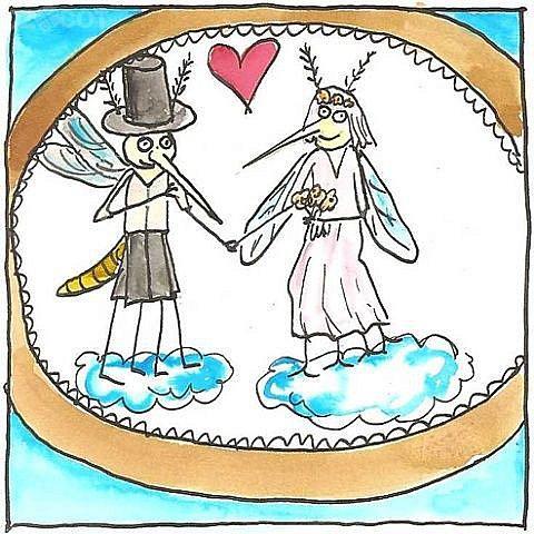 Vít Peřina: Komáři se ženili