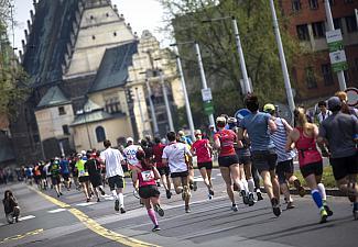 půlmaraton Pardubice