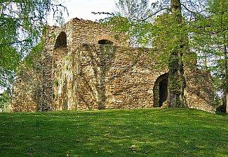 Svojšice - castle ruins