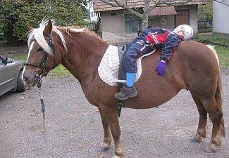 Jezdecká stáj Marko