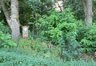 Choltická obora - přírodní rezervace