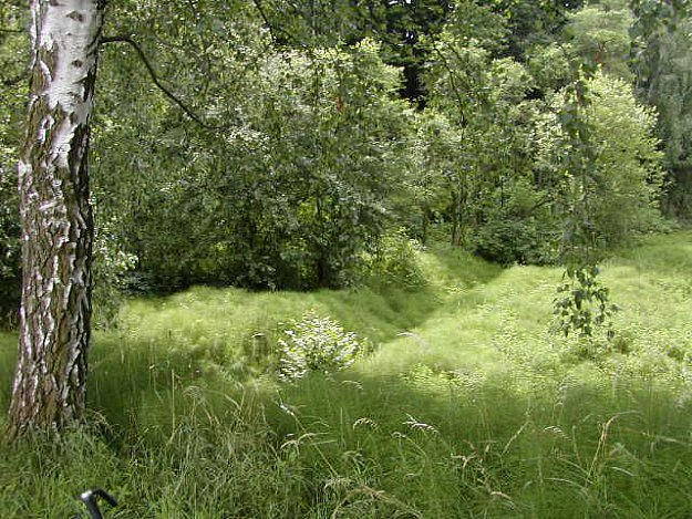 Na Hradech - nature preserve