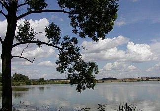 Sopřečský rybník